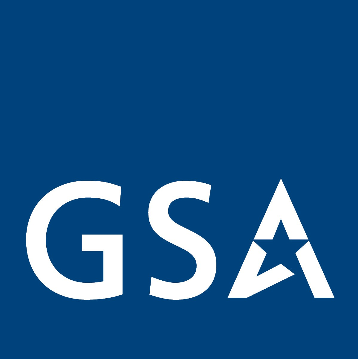 GSA Oasis Contract - Logo